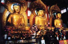 Three Buddhas at the Six Banyan Tree Temple in Guangzhou, China Overseas Chinese, Visit China, World Religions, Buddhist Temple, Guangzhou, Present Day, Buddha, Statue, City