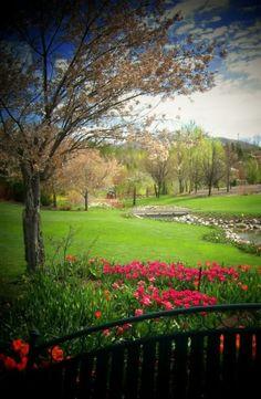 Thanksgiving Point, Utah. Gotta love, love, love the gardens!