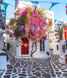 Mykonos In Greece.Search for your perfect vacation. Places To Travel, Travel Destinations, Places To Go, Beautiful Flowers, Beautiful Places, Myconos, Greece Islands, Thessaloniki, Greece Travel