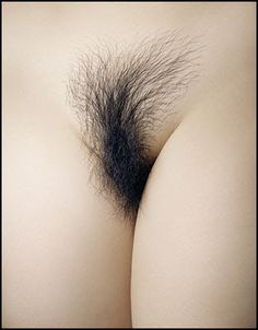 Pubic Hair - Guido Mocafico [clique para ampliar]