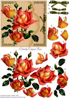 """A lovely Tzingane rose on Craftsuprint designed by Bodil Lundahl - This design is no. 2 in a serie of five with vintage flowers taken from old books or postcards. I think these old drawings and paintings are so beautiful that they deserve not to be hidden in drawers or boxes, and therefore I have given them a new """"vintage-like"""" background. They'll all make very, very pretty cards which can be used for what ever occasion you may like. The cutting is maybe not the easiest part of it, but the…"""
