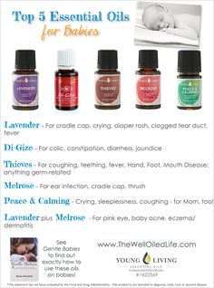 Top 5 Young Living Essential Oils for Babies! ylscents.com/sherryphillips #1486278