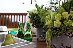 Para los espacios exteriores se recomiendan las plantas. Foto:Agencia Reforma