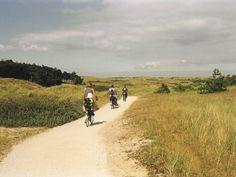 Afbeelding van http://bungalowsaanzee.com/wp-content/uploads/2014/08/fietspaden-in-de-duinen1.jpg.