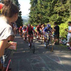 Tour de Pologne on Bukovina wall