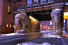 """Die Elefanten der Carlsberg-Brauerei in Kopenhagen...   """"Das Elefantenmotiv spielte eine tragende Rolle in der Geschichte der Brauerei Carlsberg. Im Jahre 1901 errichtete der Architekt J.L. Dahlerup für Carl Jacobsen, den Sohn des Firmengründers, auf der Insel Bornholm einen von vier Elefanten-Reliefs gestützten Turm. Jacobsens Inspiration hierfür war ein Elefantenobelisk in Rom. Nachdem das Elefantenmotiv die Familie Carlsberg über 50 Jahre begleitet hatte, wurde 1955 schließlich das ..."""