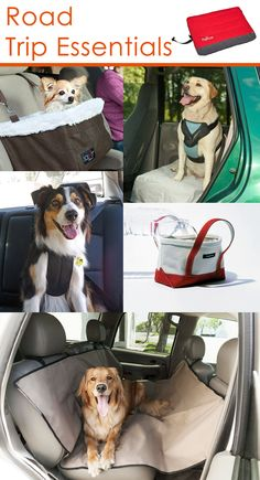 Planning a road trip with your dog? Get you and your car ready with the necessary gear to keep your best friend safe and happy while on your great adventure. Car seat? Check! Dog harness? Check! Car blanket? Check! Outdoor dog bed? Check! Portable water bowl and feeder? Check and check!