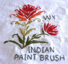 Wyoming Indian Paint Brush square | Flickr - Photo Sharing!