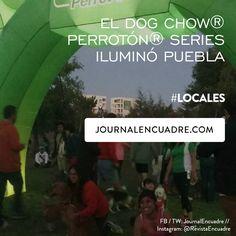 Revista Encuadre » El Dog Chow® Perrotón® Series iluminó Puebla