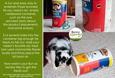 DIY Rabbit Toy Ideas   Bunny Approved