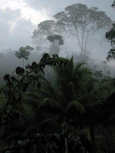Laguna del Lagarto, Costa Rica