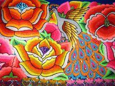 Junín: La época de las flores que no se marchitan