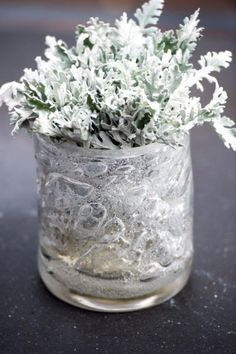 Vase with bubbles