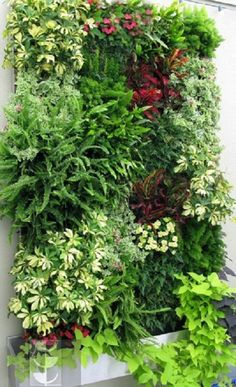 40 Marvelous DIY Wall Gardens Outdoor Design Ideas There are so many ways to make great Wall Gardens Outdoor for your outdoor space home. It's because It is never late to make a unique and charming garden in your yard that will be a perfect p… Garden Wall Designs, Vertical Garden Design, Vertical Gardens, Front Gardens, Jardim Vertical Diy, Garden Ideas To Make, Easy Garden, Walled Garden, Plant Wall