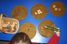 fall- Sorting nuts onto felt circles using tongs.