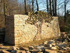 """unicorn-meat-is-too-mainstream: """" Dry Stone Tree Wall that Love Built in Situated within the Island Lake Conservation Area of Ontario, Canada, is the Dods and McNair Memorial Forest Trail, where. Decorative Stone Wall, Stone Decoration, Memory Tree, Stone Masonry, Dry Stone, Stone Work, Tree Wall, Trees To Plant, Garden Art"""