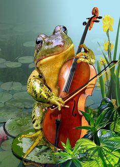 Shall I serenade you with my Bull Frog Symphony in F minor?