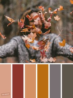 newest photographs shaded autumn color palette summer recipe : Start building a person's color scheme! Are you lounging outside sqrs for your forthcoming afghan or maybe quilt? Wanting to item in concert a color p… Lounge Colour Schemes, Rustic Color Schemes, Rustic Color Palettes, Color Schemes Colour Palettes, Nature Color Palette, Room Color Schemes, Rustic Colors, Colour Pallette, Grey Palette