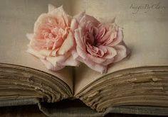 an open book...