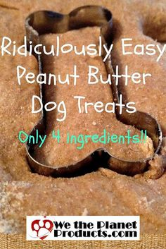 Easy Peanut Butter Doggie Biscuits with Silicone Mats Recipe.  Your FurBaby will LOVE these!