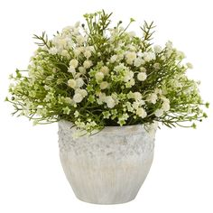 Mixed Mini Daisy Silk Plant (Indoor/Outdoor) comes with decorative pot. The Mixed Mini Daisy Silk Plant displays the mini daisy perfectly with the plethora of gently rising leaves and tiny flowery shoots , makes a wonderful gift. Great for home & office! Silk Plants, Fake Plants, Artificial Plants, Indoor Plants, Indoor Outdoor, Flowering Plants, Foliage Plants, Outdoor Seating, Outdoor Ideas