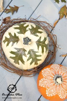 Mod Podge Projects ~ personalize your pumpkins with lace or natural elements.
