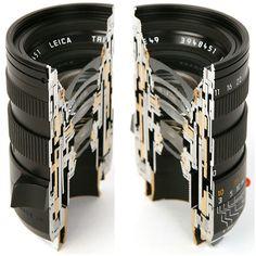 Inside the lens.