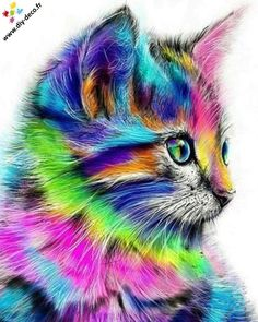 Colorful Rainbow Cat DIY Paint by Number Kit Framed/ Unframed Canvas + Paint + Brush Wall Decor Paint By Number Kits, Colorful Animals, Colorful Animal Paintings, Cat Paintings, Cute Animal Drawings, Drawing Animals, Cat Drawing, Drawing Room, Cat Colors