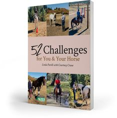 Horse Gear, Horse Tips, Obstacle Course Training, Best Books Of All Time, Ranch Riding, Pony Breeds, Future Farms, Horse Books, When Things Go Wrong