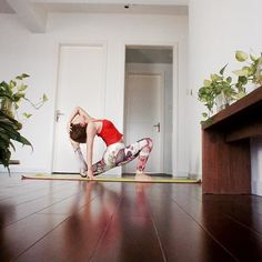 Morning's better with yoga!  #chicmoda #yogapants #yogaleggings #leggings #tight #yogatights #workout #morning #goodmorning #energy #yogapose #instaphoto #photography #photoshoot #green #plants #scindapsus #red #exercise #indoor #home #new #fresh #yogi #yogagirl #happy