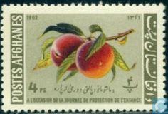 1962 Afghanistan [AFG] - Children