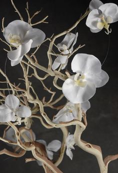 White orchids on string garland, 5 ft.; intertwine in branches for pretty centerpiece; 3/$4.50 ea, at Save-on-crafts