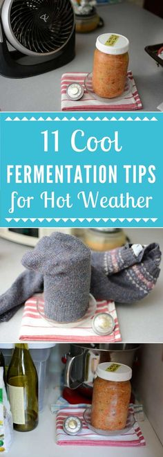 Trying to make sauerkraut in hot weather? Fermentation tips cool your ferment and ensure success: Adjust salt, the Wet T-shirt. Homemade Sauerkraut, Sauerkraut Recipes, Fermented Cabbage, Fermented Foods, Breakfast Picnic, Fermentation Crock, Best Probiotic, Anti Inflammatory Recipes, Canning Recipes