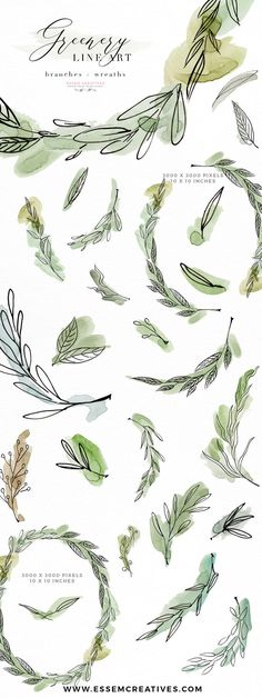 Greenery Line Art Watercolor Clipart, Olive Eucalyptus Branches, Tropical Fine Art Botanical Ink Graphics | Use these graphics for Tropical Watercolor Wedding Invitation, Bridal Shower Party Invites, Greenery inspired natural botanical Logos and Branding, Packaging, Home Decor Prints, Coffee Mugs. These fine art olive and eucalyptus branches are perfect for your next design project. Click to see more>>