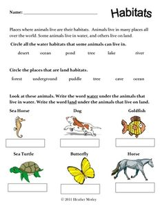 Science SOL 1.5c Land and Water Habitats Bundle: 3 pages that incorporate the following concepts. Categorizing animals that live on land or water habitats Keywords: Science: SOL 1.5c, Habitats, Sort, First Grade, Land Habitats, Teacher Worksheets, Land Habitats