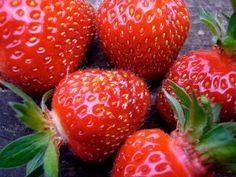 If you want to give your strawberry plants a jump-start, treat them to this recipe: mix a can of beer, half a cup of cold coffee, two tablespoons of liquid dish soap, and two gallons of water, then soak the roots of the plants for ten minutes. Plant your strawberries right away, and water them with the remaining solution