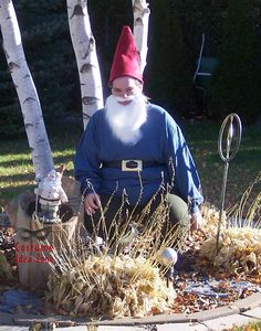 Homemade Garden Gnome costume (Travelocity gnome). See lots more at http://costumeideazone.com!