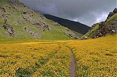 Красоты величественного Кавказа: 20 вдохновляющих снимков | ТАЙНЫ ВСЕЛЕННОЙ