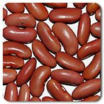 Organic Light Red Kidney Bean