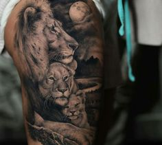Stunning lion tattoo