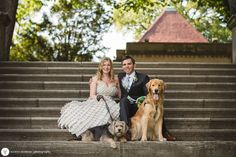 Curtis Hall, Ross And Rachel, Labrador Retriever, Party, Photography, Wedding, Labrador Retrievers, Valentines Day Weddings, Photograph