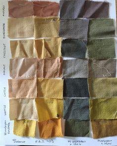 Soft Autumn dye inspo