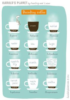 Decoding Coffee - 2011 International Coffee Classifications Released! The Short Macch & Magic are Dead!! - Paul Kaan ... For The Love of Sharing Great Food & Filthy Good Vino with Fun People