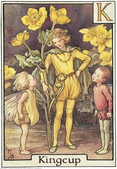Illustration for the Kingcup Fairy from Flower Fairies of the Alphabet. A boy fairy, dressed as a king, stands in the centre holding a kingcup. Two small boys dressed as elves stand one either side looking up at him.  										   																										Author / Illustrator  								Cicely Mary Barker