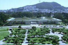Renzo Piano en el California Academy of Sciences en San Francisco