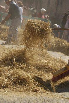 Després es retira el pallús i s'agrana l'arròs que es passarà per l'erer. Pulled Pork, Ethnic Recipes, Food, Pull Pork, Meal, Eten, Meals