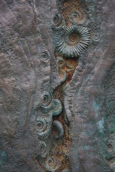 Seppe Slabbinck likes fossils. Look what a piece of art! ammonite fossils as art! Patterns In Nature, Textures Patterns, Nature Pattern, In Natura, Foto Art, Ammonite, Rocks And Gems, Natural Forms, Rocks And Minerals