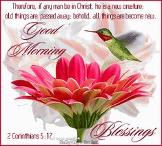 579 Best Good Morning Blessings Images Have A Happy Day Good