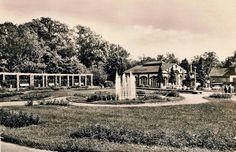 Rosengarten an der alten Pelzmühle, 1971