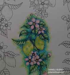 Johanna Basford, Dream Catcher, Coloring Books, World, Instagram, Vintage Coloring Books, Dreamcatchers, Coloring Pages, The World